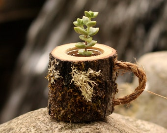 Coworker Gift Succulent Pots Rustic Coffee Mug Plant Holder Boss Mug Boss Gift Log Planter Desk Planter Desk Decor Tea Cup Teacher Gift