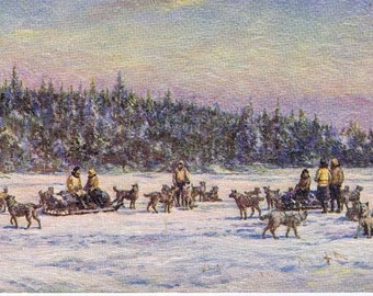 "Antique Vintage Tuck's Color texture Postcard ""Winter Travel"" Grenfell medical dogsled team, Circa 1910-1913 Newfoundland Labrador Canada"