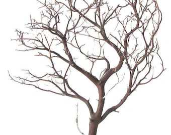 Natural Red Manzanita Branches - 2 pieces, 24 inches tall