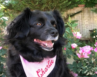 Personalized Pink Seersucker Dog Bandana - Custom Bandanas - Best Puppy Dog Gifts by Three Spoiled Dogs