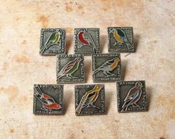 Rare Birds Pins, Birds Pins, Seal Pin, Jay Bird PIn, Flora and Fauna