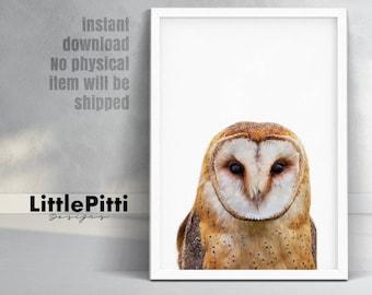 Owl print, woodlands nursery animal, owl decor, owl wall art, nursery printable, printable woodlands, modern art print, kids owl print