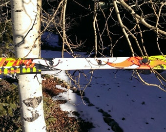 Recycled Ski Coat Rack