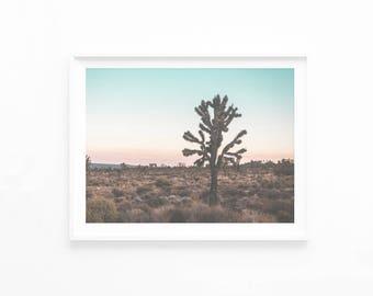 Joshua Tree Photography, Joshua Tree Wall Art Print, Joshua Tree Poster, Printable Art Digital Instant Download, California Desert, jt3c2c1