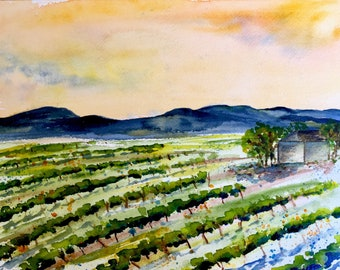 Edna Valley Vines, Central California winery, California vineyard, wall decor, vineyard landscape