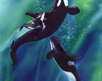 Orca // Whales // Watercolor Greeting Card // Spirit of the Sanctuary  // Single (Blank inside)