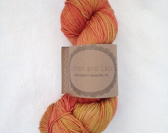 Rhubarb ~ Lichen and Lace Hand Dyed Yarn