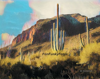 Saguaros in the Catalina Mountains