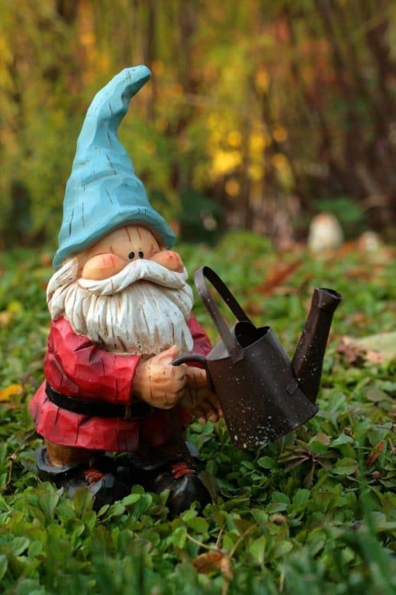 Garden Gnomes On Sale: Garden Gnome Greeting Card Gnome Note Card Cute Gnome Card