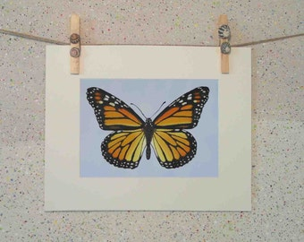 Butterfly, original oil painting fine art print on paper by Elena Parashko, botanical art print, wildlife painting, orange wings, Monarch