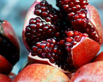 Pomegranate Seed Oil 4 oz.