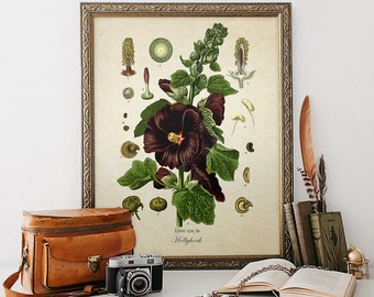 Antique Botanical Wall Art Print Hollyhock Giclee Vintage Home Decor Natural History Art Colorful Decorative Flower Reproduction FL018