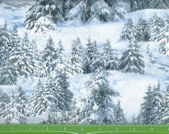Winter Wonderland scene in the woods,Elizabeth Studio