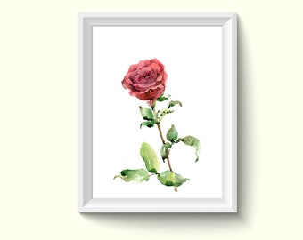 Rose Flower Watercolor Painting Poster Art Print P455