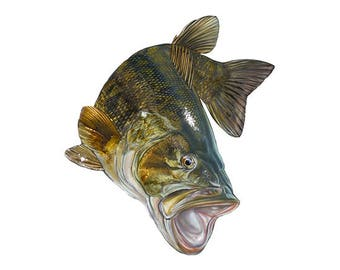 Jumping Smallmouth Bass Decal - Sticker