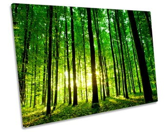 Forest Landscape Sunrise Green Print CANVAS WALL ART Picture Framed