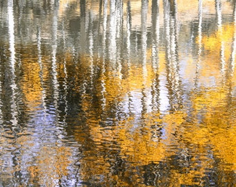 Aspen trees pond reflection photo, aspen tree decor, pond reflection abstract art, fall tree photo, cabin decor, Colorado art, office wall