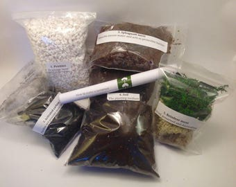 LARGE Terrarium Starter Kit