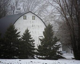 Farmhouse decor, white barn, snow, winter photo, photography, rustic decor, farmhouse, barn, pine trees, white, green, gray