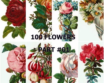 Vintage Floral Collection of 100 images ( Part #1 of #7 ) Scrapbooking Prints Cards Decoupage Collages Invites Transfers and more...