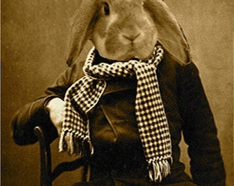 Sepia Bunny vintage  photo download