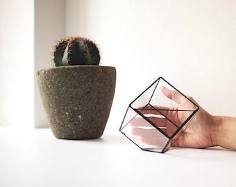Glass terrarium_small cube