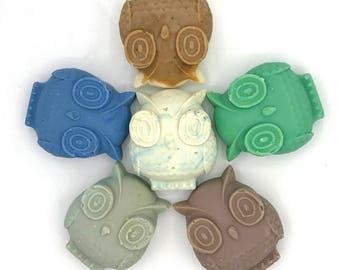 SALE Owl Soap Set