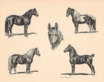 Ponies and Donkey Print by Edwin Megargee - Book Plate - Shetland Chincoteague Welsh Hackney Vintage Wall Hanging
