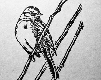 "Song Sparrow, hand carved woodblock print, 5""x7"""
