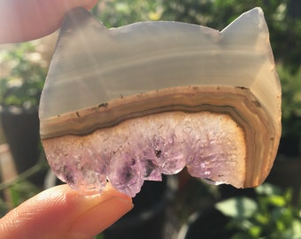 Cat Amethyst slice
