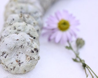 Unique Practical Favors 50 Plantable Wildflower Seed Cakes Rustic Boho Garden Wedding Shower Birthday Plants