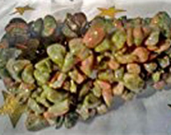 UNAKITE~(helps find animal guide, abandonment issues, & gardening)~Woven GeMsToNe~S-T-R-E-T-C-H Bracelet