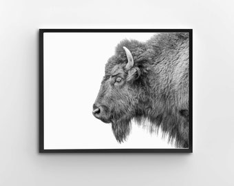 Bison Print, Black And White, Nursery Print, Animal Wall Art, Bison Print, Nursery Printable Art
