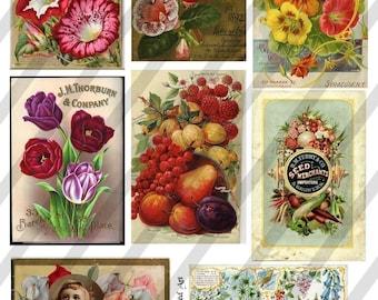 Vintage Flower Seed Packets, Digital Collage Sheet  (Sheet no.E7) Instant Download