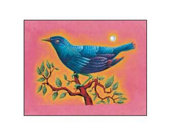 Blue Bird Fine Art Print