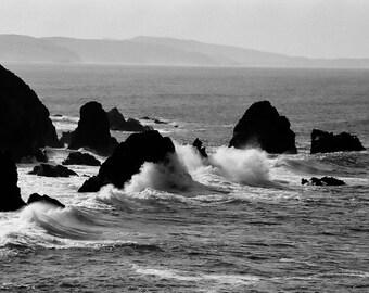 Photograph near Bodega Bay, California - Black and White 5