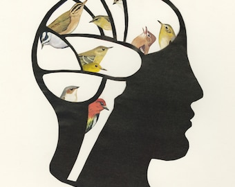 Bird Brain.  Limited edition print of an original collage by Vivienne Strauss.