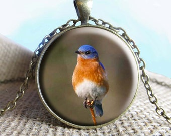Bluebird Pendant Necklace Jewelry, Blue Bird, Bird Necklace Jewelry, Bird Photo Jewelry, Photo Gift