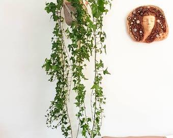 24 in Macrame Plant hanger; Planter hanger from Cotton; Pot hanger; Plant holder; Hanging plant holder; Plant hanger Macrame Pot Hanger