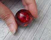 Everlasting Red Rose in V...