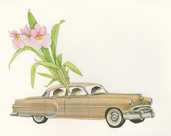 Pleasure seeking Pontiac driving phoebes with a pansy orchid. Original collage by Vivienne Strauss.