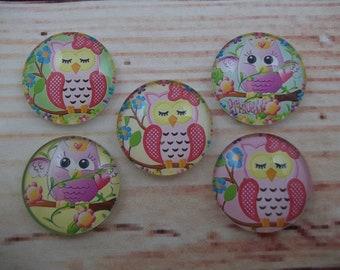 Cute Owl Fridge Magnets, Glass Kitchen Magnets, Set of 5, Kitchen Decor, Hostess Gift, Housewarming Gift, Office Decor, Locker Magnet
