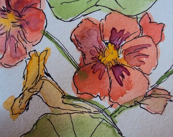 """Pen and watercolour artwork on paper of nasturtium flowers sketch painting by Michele Thomas """"Nasturtiums No.8"""""""