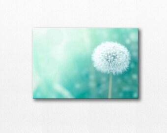 dandelion canvas nursery wall art dandelion decor photography canvas nursery decor dandelion photography print nature mint pastel aqua
