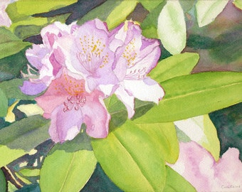 Rhododendron art watercolor painting print by Evalene Tarr, watercolor floral, spring flowers, watercolor print, pink, purple, blue, green