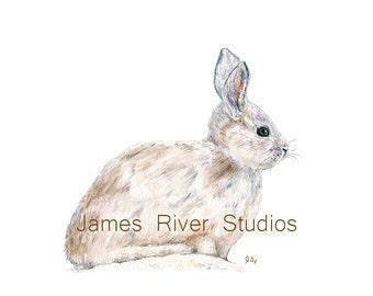 Rabbit Art Rabbit Painting Rabbit Print. Rabbit Watercolor Rabbit Large Print Rabbit Poster Rabbit Wall Decor Rabbit Wall Art Bunny Rabbit.