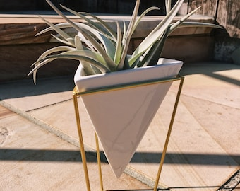 Gold Stand with Triangle Ceramic Planter & Air Plant