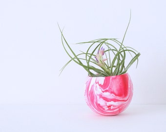 Marbled Pink & White Air Plant Planter Pod with Air Plant, Pink, White. Hand painted Terrarium.  Hot Pink Modern Planter Pot, Marbling