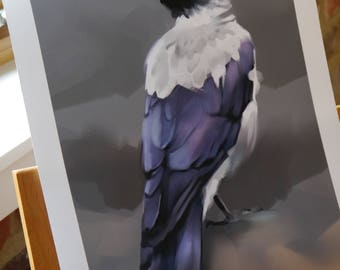 Signed Print- Hooded Crow 29.7 x 42.0cm