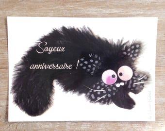 Postcard with mischievous cat birthday card